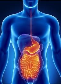 Magen-Darm-Grippe